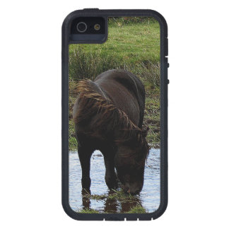 Dartmoor Pony Drinking At Watering Hole  . 1 Cover For iPhone 5