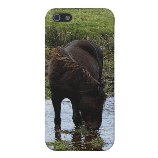 Dartmoor Pony Drinking At Watering Hole . 1 iPhone 5/5S Case