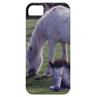 Dartmoor Pony Grey Mare Grazeing  Foal Resting Case For The iPhone 5