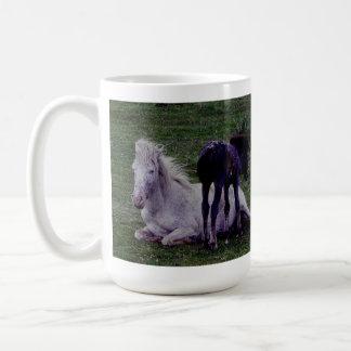 Dartmoor Pony Grey Mare Resting Foal Standing Mugs