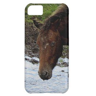 Dartmoor Pony In Watering Hole iPhone 5C Case