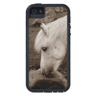 Dartmoor Pony Rubbing On Rock . Sepia iPhone 5 Covers