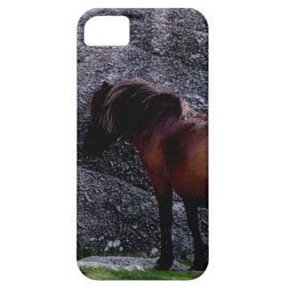 Dartmoor Pony Sheltering Bone Hill Rocks .3. iPhone 5 Covers