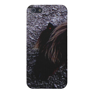 Dartmoor Pony Sheltering Bone Hill Rocks Cover For iPhone 5/5S