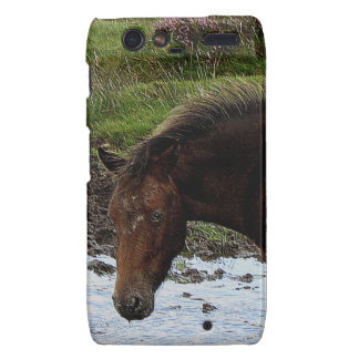 Dartmoor Pony Standing In Watering Hole Droid RAZR Cover