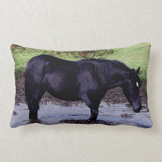 Dartmoor Pony Wadeing In Watering Hole Pillows