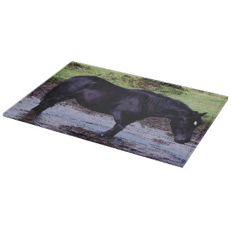 Dartmoor Pony Wading In Watering Hole Cutting Boards