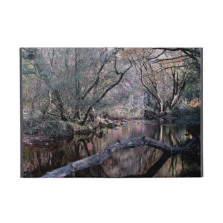 Dartmoor River Dart Valley Holne Chase Autumn . 1 Covers For iPad Mini