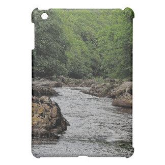 Dartmoor River Dart Valley Rowbrook Case For The iPad Mini