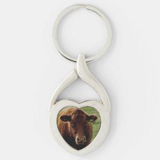 Dartmoor South Devon Cow Looking Key Ring
