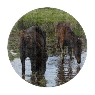 Dartmoor Two Ponies Drinking At Watering Hole Cutting Board