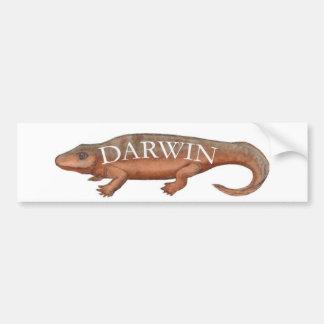 Darwin Evolution Tetrapod Bumper Sticker