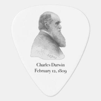 Darwin Plectrum