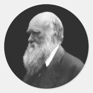 Darwin Portrait Round Stickers
