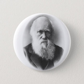 Darwin Vignette Button