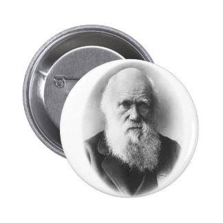 Darwin Vignette Button