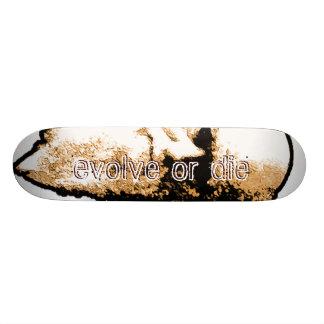 Darwinian Skateboard