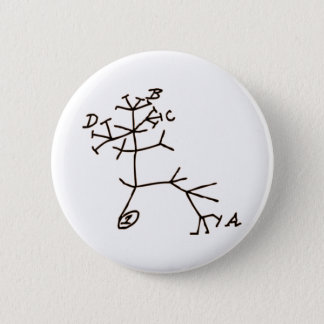 Darwin's Tree 6 Cm Round Badge