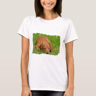 daschund-20.jpg T-Shirt