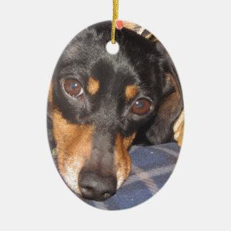 Daschund Weener Dog face Ceramic Oval Decoration