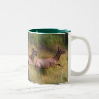 Dashing for cover Two-Tone mug