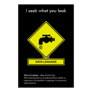 Data Leakage Security Awareness Poster