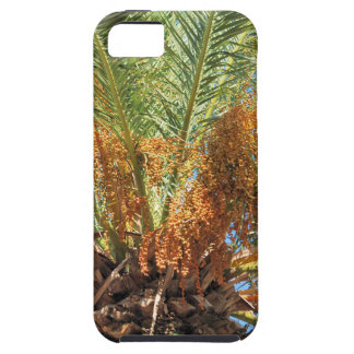 Date palm case for the iPhone 5
