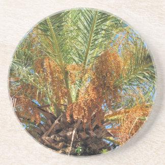 Date palm coaster