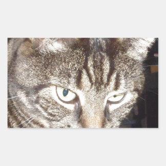 Dave's Watching You Rectangular Sticker