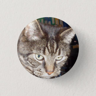Dave's Watching You Small, Round Badges