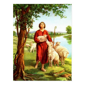 David The Shepherd Postcard