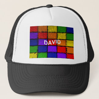 DAVID TRUCKER HAT
