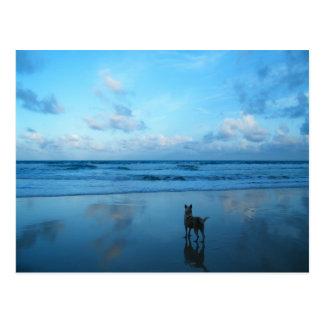 Dawn At Karon Beach, Phuket Island Postcard