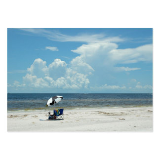 Day at the Beach Florida, USA Pack Of Chubby Business Cards
