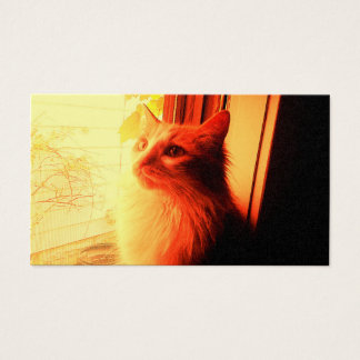Day Dream Cat Business Card