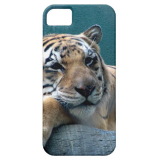 Day Dreaming Case For The iPhone 5