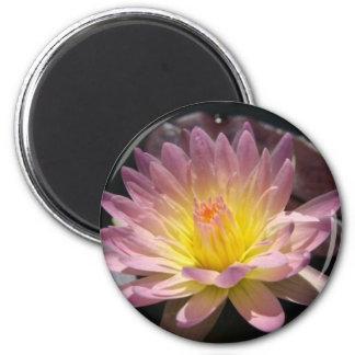 Day Glow 6 Cm Round Magnet
