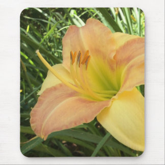 "DAYLILY ""Blond Baby"" --- Mouse Pad"