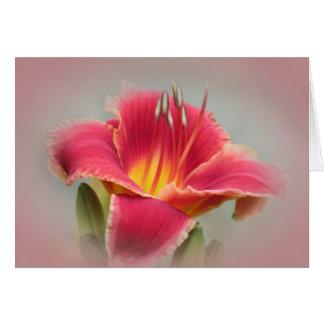 Daylily Blush Card