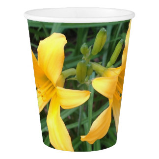 "DAYLILY ""Downey"" Duo --- Paper Cup"