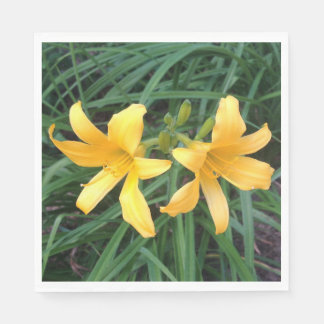 """DAYLILY """"Downey"""" Gold Duo --- Paper Napkins"""