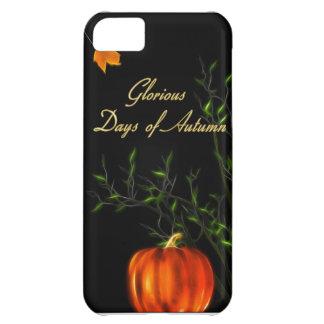 Days of Autumn iPhone 5 case