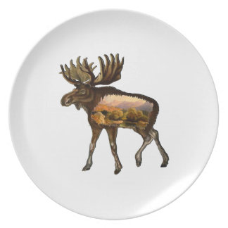 Days of the Wild Plate