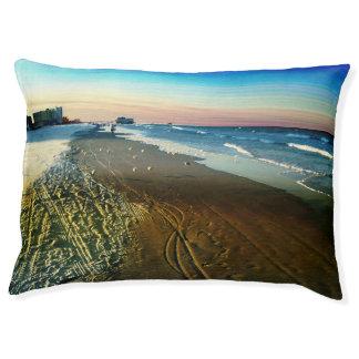 Daytona Beach Shoreline and Boardwalk Pet Bed