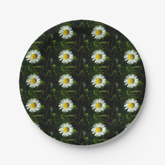Dazzling Daisy Paper Plate