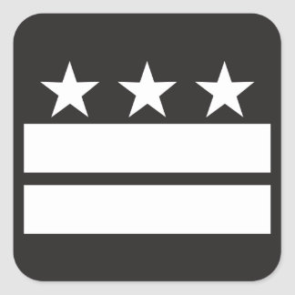 DC Flag in Black & White Square Sticker