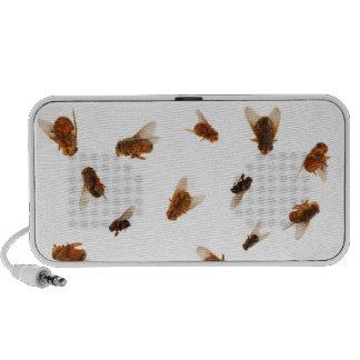 Dead Fly Speakers