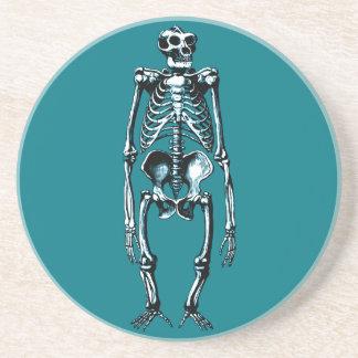dead gorilla skeleton beverage coasters