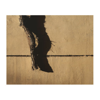 Dead Ivy Vine and Shadow Wood Wall Art