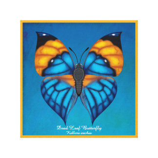 Dead Leaf Butterfly Canvas Print